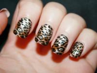 Маникюр на короткие ногти — 125 фото красивого и модного дизайна для коротких ногтей + видео мастер-класс